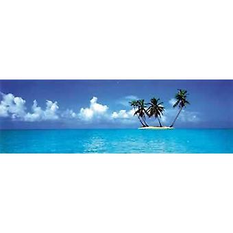 Karibik Poster  Meer und Palmen (Langbahnposter) Kleinformat