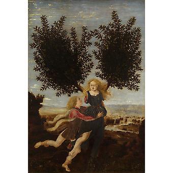 Apollo and Daphne, Antonio del Pollaiuolo, 28x19cm