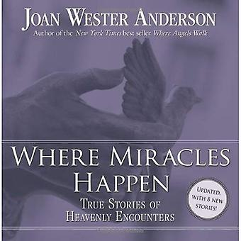 Where Miracles Happen: True Stories of Heavenly Encounters