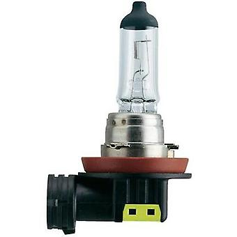 Halogen bulb Philips Vision H11 55 W