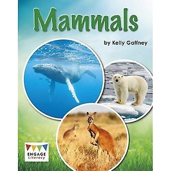 Däggdjur (engagera Literacy: engagera läskunnighet vit)