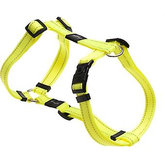 Rogz For Dogs Fanbelt Tuig Geel 20 Mmx45-75 Cm