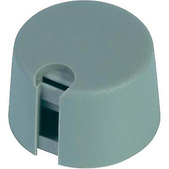 Control knob Grey (Ø x H) 24 mm x 16 mm OKW A1024068 1 pc(s)