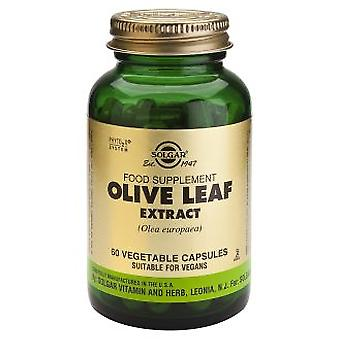 Solgar Olive Leaf Extract 60 Vegetable Capsules (Dieta , Suplementy)