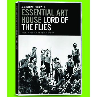 Lord of the Flies [DVD] USA import