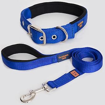 Ginger Ted High Quality Padded Strong Nylon Dog Collar & Lead Value Pack Blue (3 sizes)