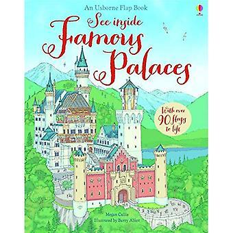Ver o interior famosos palácios (veja Usborne dentro)