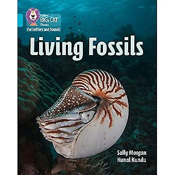 Collins Big Cat Phonics for Letters and Sounds - Living Fossils: Band 7/Turquoise (Collins Big Cat Phonics for Letters and Sounds)