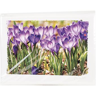 Artist Series Photo Card W/Envelope-Crocus Gathering C0001E