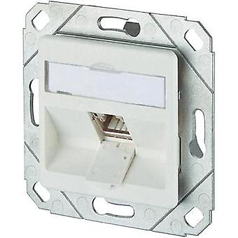 Network outlet Flush mount Insert with main panel CAT 6A 1 port