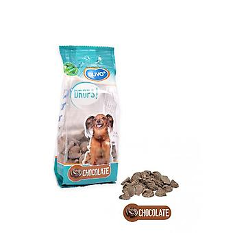 Duvo+ Dogs Chocolate Drops 100 Gr (Chiens , Snacks et friandises , Semi-humides)