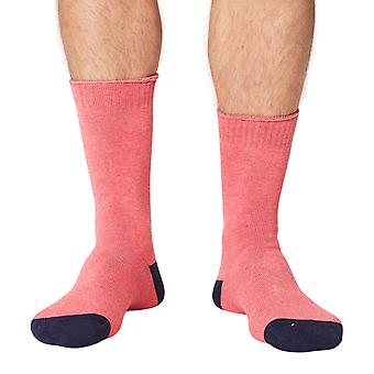 Forester thick men's organic cotton crew socks in pink   By Thought