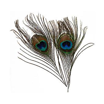 2 Peacock Eye Feathers for Arts & Crafts - 20cm