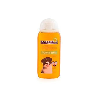 Ancol chien shampooing Tropical Fruits 200ml