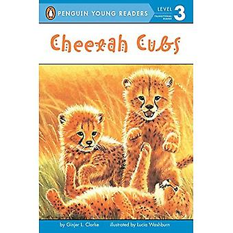 Cheetah Cubs (All Aboard Science Reader: Level 2)