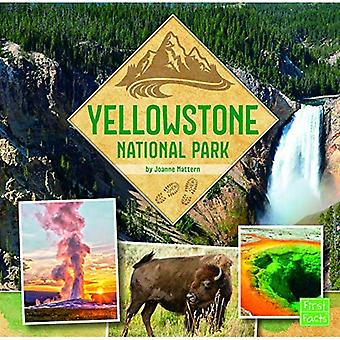 Yellowstone National Park (U.S. National Parks Field Guides)