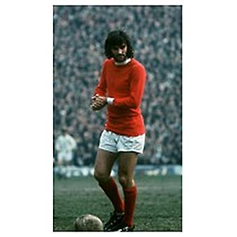 Imán de nevera de George Best (se)