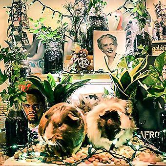 Haj - Debbie & Becky [Vinyl] USA importerer