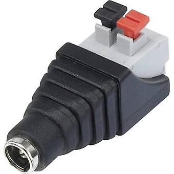 Conrad Components QT-DC2.1F Low power connector Socket, straight 5.5 mm 5.5 mm 2.1 mm 1 pc(s)