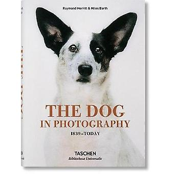 The Dog in Photography 1839-Today by The Dog in Photography 1839-Toda