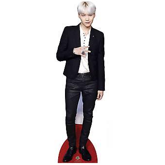 Suga from BTS Bangtan Boys Mini Cardboard Cutout / Standup