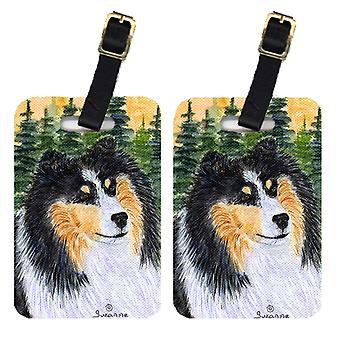 Carolines Treasures  SS8140BT Pair of 2 Sheltie Luggage Tags