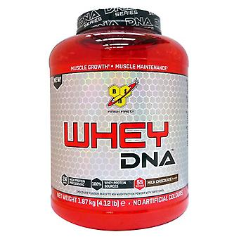 BSN Whey Dna 1870 gr (Sport , Muscle mass , Proteins)