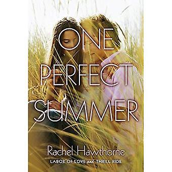 Um Verão perfeito: trabalho de amor e passeio de emoção