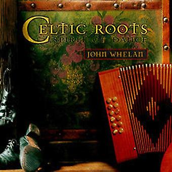 John Whelan - keltiske rødder [CD] USA import