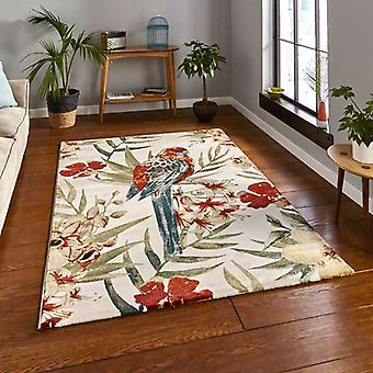 Rugs -Tropics - 6093 Cream / Multi