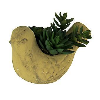 Artificial Succulent Plants In Ceramic Bird Planter