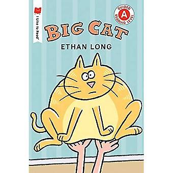 Stor katt (jag gillar att läsa böcker)