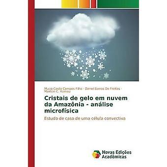 Cristais de gelo em nuvem da Amaznia  anlise microfsica by Costa Campos Filho Mucio