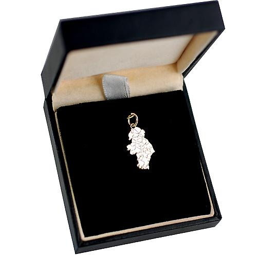 9ct Gold 19x13mm Map of Ireland Pendant