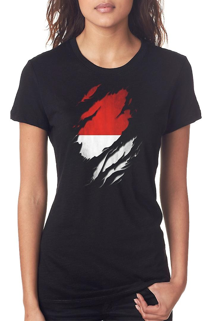 Indonesian Grunge Flag Ripped Effect Ladies T Shirt