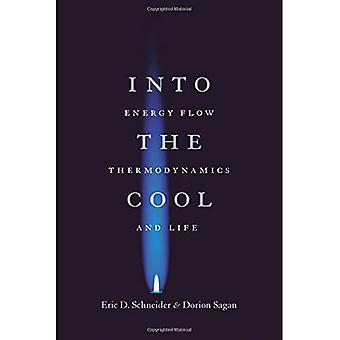 Into the Cool: Energy Flow, Thermodynamics and Life