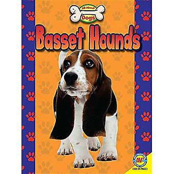 Basset Hounds (All about Dogs)