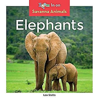 Elephants (Savanna Animals)