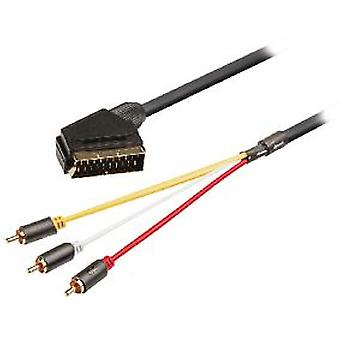König Scart Cable - Rca Male Switchable Scart Rca Male 3X 2 M