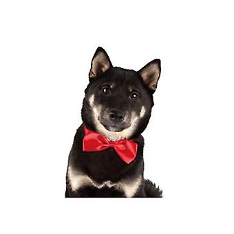 Show Tech Canine Costume Dickie Bows Assorted 10Pk