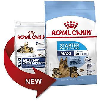 Royal Canin Starter Maxi Mother & Baby Dog (Chiens , Nourriture , Croquettes)