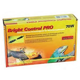 Lucky Reptile Rep Bright Control Pro 70W (Reptiles , Lighting , Lamps)