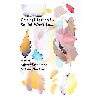 Critical Issues in Social Work Law by Alison K. Brammer - Jane Boylan
