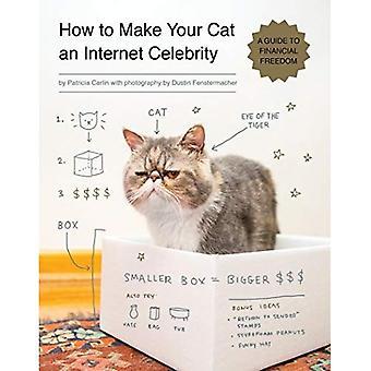 Hur man gör din katt en internetkändis: en Guide till ekonomisk frihet