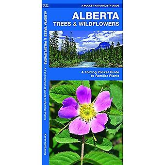 Alberta Trees & Wildflowers: An Introduction to Familiar Species (Pocket Naturalist Guides)