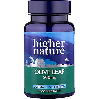 Higher Nature Olive Leaf Extract, 30 veg caps