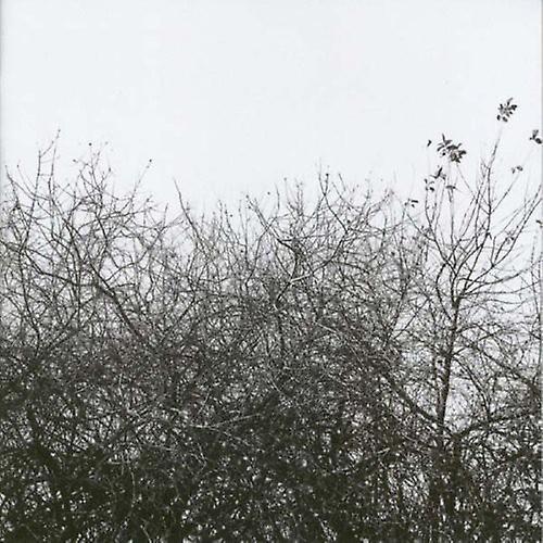 Simon Joyner - Lost with the Lights on [CD] USA import