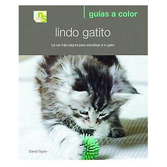 KNS Ediciones Cute Kitten (Cats , Training Aids , Anti-Stress)