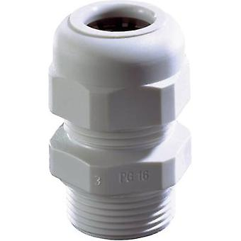 Cable gland PG21 Polyamide Black W