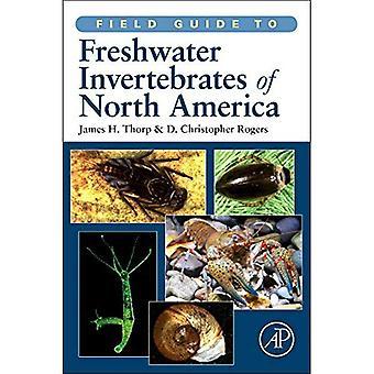 Guia de campo para invertebrados de água doce da América do Norte